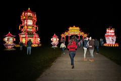 China Light 77 (@2008) Tags: holland netherlands utrecht a900 sal20f28 chinalight