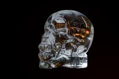 skull of glass (Roel Wijnants) Tags: art glass skull wandelen kunst denhaag etalage glas vorm drank blazen doodshoofd vondst roel1943 roelwijnants winkelruit hofstijl mooidenhaag roelwijnantsfotografie haagspraak skullofglass wandelvondsten