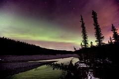 Waiparous Creek (John Andersen (JPAndersen images)) Tags: trees night stars aurora waiparouscreek