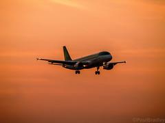 Sunset (Bradzer) Tags: ireland dublin aircraft airbus handheld aerlingus a320 dublinairport