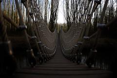 brug (Remke Luitjes) Tags: water bomen nederland zoetermeer brug zwart touw hout bruin