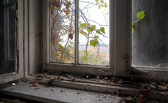 Windows 12 [1912] (Ma..Ja) Tags: street old city windows art abandoned window peeling skin kunst eingang gang east treppe forgotten german ddr ghosts rotten clinic sanatorium 1977 foyer brandenburg krankenhaus kaputt urbex tuberculosis zerstört malerei staub nex verfall aufgang denkmalschutz tuberkolose sel16f28 ddrhautklinik