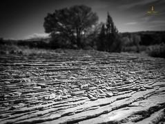 DIRT CHEAP PHOTO TOUR (Jessica Haydahl Photography) Tags: park jeff landscape photo nikon tour pentax arches national canyonlands moab medium d800 clow d600 formate d4s 645z