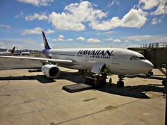 "HA A330-243 N390HA ""Nmhoe"" (kenjet) Tags: plane airport ramp gate oahu aircraft jet luggage airbus hawaiian honolulu ha baggage a330 airliner loading hnl honoluluinternationalairport a330200 hawaiianairlines phnl wideboy a330243 namahoe n390ha nmhoe"