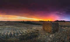 Hay at Sunrise - Panorama (Cale Best Photography) Tags: sunrise panorama hay farm field light windsor ontario windsoressex essex landscape photography nature moody color colour clouds weather