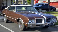 1971 Oldsmobile Cutlass 442 HT (Pat Durkin OC) Tags: 1971oldsmobile cutlass 442 ht brown