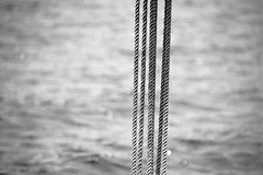 dreaming... (-gregg-) Tags: ropes water detail focus bw