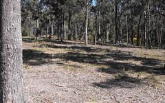 Lot 33 Ochre Lane, Millingandi NSW