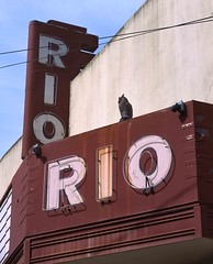 Rio Theater and Owl (RZ68) Tags: monte rio california sign neon marquee movie cinema old quonset hut sonoma county building vintage river russian area bay rz67 velvia provia e100 fake plastic owl used scare birds like pigeons