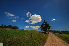 Around the curve... (Double.D - Photography) Tags: sky tree clouds canon landscape outside outdoor meadow wiese himmel wolken sigma explore 1020mm landschaft schwarzwald blackforest baum landweg doubled canon600d