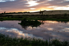 Sunset_by_the_waterwork3860-4 (allybeag) Tags: sunset reflection waterworks pond puddle crosscanonby