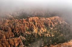Rim Trail (jametalb) Tags: hdr utah landscape nature brycecanyon sky fog landscapes cloudy overcast