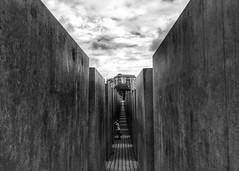 Nascondino (Alan Avon) Tags: berlin berlino viaggi germany germania biancoenero blackwhite holocaustmemorial olocausto digital