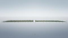 Reverberation (Loscar Numael) Tags: japan longexposure nori seaweed farm singhray minimalism minimalist minimal bamboo decor walldecor fine ocean color ndfilter loscarnumael wwwloscarnumaelcom