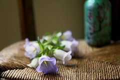 Still life (eleni m) Tags: stilllife lisianthus flowers indoor chair old bottle dof wickerseat