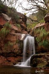 Yunga jujea (DjasmineDeluca) Tags: jujuy cascada rio yunga selva