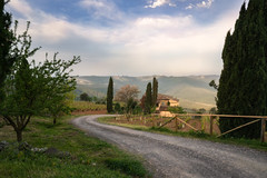 Vineyard in Tuscany (ludwigriml) Tags: cypress farm farmhouse gravelroad hills italy ludwigrilmlphotography ludwigrimlnaturallightphotography morningfog morninglight naturallightphotography road tuscany vine vineyard fog foggy house morning trees