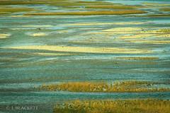 Medicine Lake (fernechino) Tags: alberta canada canadianrockies jaspernationalpark medicinelake