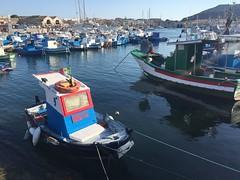 Favignana Agosto 2016 (Luca W Alberti) Tags: south harbour boat italy 2016 favignana sicily