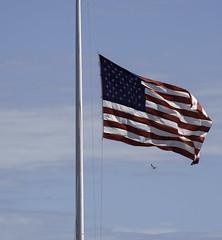 Fort Sumter Flag (dcnelson1898) Tags: charleston southcarolina nps nationalparkservice southeast atlanticocean coast travel vacation holiday civilwar history militaryhistory fortsumter