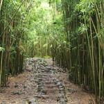 Haleakala National Park: Kipahulu Area thumbnail