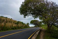 DSC_6248 (sergeysemendyaev) Tags: 2016 riodejaneiro rio brazil         prainha beach ocean storm waves landscape