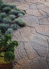 small 8 (bdlmarketing) Tags: belguard beautiful paverstone walkway pavers unique landscape hardscape dreamscape