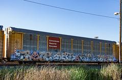 (o texano) Tags: houston texas graffiti trains freights bench benching bozo gets rtd