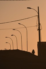 Disappear Into The Sunset (Ctuna8162) Tags: woman bicycle antofagasta chile sidewalk