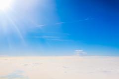 Sun (Andreza Menezes) Tags: curitiba paran friend amor verde cores colorido memorialucraniano bosquepapa brazil brasil trip viagem jardimbotanico ceu sky janela window nuvens clouds pessoa people jardim garden madeira wood sun sol