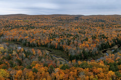 River Through Autumn Foliage (Sam Wagner Photography) Tags: carp river cuts through fall foliage autumn colors trees canopy orange gold yellow green twilight landscape porcupine mountains up upper peninsula michigan midwest travel
