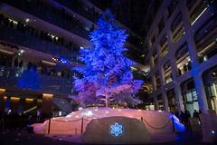 "KITTE ""White Tree"" -Winter Illumination 2014-2015 (Marunouchi, Tokyo, Japan) (t-mizo) Tags: christmas xmas canon tokyo 東京 canon5d クリスマス lr marunouchi lightroom 丸の内 中央区 丸ノ内 kitte canon2470mm chuouku canon2470mmf4l 日本郵便 canon2470mmf4 eos5d3 ef2470mmf4lisusm lr5 ef2470mmf4l canon2470f4l eos5dmarkiii 5d3 canon2470f4 5dmark3 canon5d3 lightroom5 canon2470mmf4lisusm eos5dmark3 5dmarkiiii canon24704l キッテ canon2470mmf4lis canon24704 kittewhitetree kitteホワイトツリー"