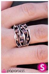 291_ring-brownkit1march-box03