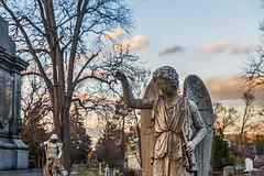 Sleepy Hollow Cemetery 11/24/14 (SoundFocusPhotography) Tags: sky newyork cemetery grave graveyard nikon dusk newyorkstate westchester westchestercounty sleepyhollow graveside sleepyhollowcemetery newyorkcemetary nikond610