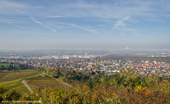 A Foggy day in the Hills above Neckarsulm. (andreasheinrich) Tags: november autumn germany deutschland nikon herbst foggy sunny hills berge sonnig southgermany neckarsulm neblig d7000