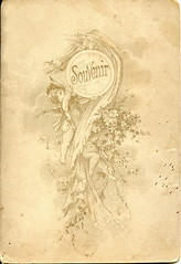 (elinor04 thanks for 25,000,000+ views!) Tags: old vintage design photo graphics victorian reverse cherubs verso 1890s cabinetcard backmark elinorsvintagephotocollection