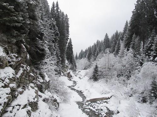Caurasbach