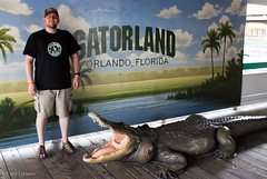 "Gatorland • <a style=""font-size:0.8em;"" href=""http://www.flickr.com/photos/92159645@N05/16233247071/"" target=""_blank"">View on Flickr</a>"