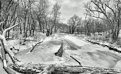 The Ice Age (Vivek Sharma K) Tags: trees cold iceage river frozen frozenriver