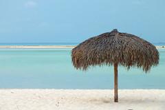 Playa Paraiso (Diego Innocenti) Tags: sea sun beach umbrella seaside sand cuba playa caribbean largo paraiso cayo caraibi cayolargo beachumbrella caribbeans playaparaiso playaparadiso