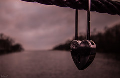 Lovers (LiinaP) Tags: wedding estonia lock lovers forever