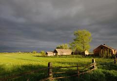 Polish countryside (RafalZych) Tags: sky storm clouds dark golden countryside nikon country dramatic sigma poland polska wideangle h 1020 kurpie mazowsze d90 krajobraz wie masovia wiejski kresy flickrtravelaward damiety damity kurpiowszczyzna