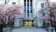 Vancouver City Hall (Ruth and Dave) Tags: pink flowers trees building vancouver cherry golden spring doors blossom cityhall steps entrance sakura artdeco framing brass shining dwwg
