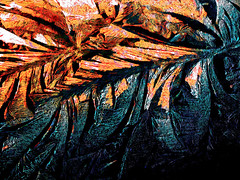 Fire and Ice (Steve Taylor (Photography)) Tags: blue winter orange white abstract cold art ice digital fire crystals purple grain