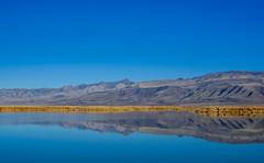 Foxtail Lake (Gentilcore) Tags: reflection nevada greatbasin snwr churchillcounty stillwaternationalwildliferefuge importantbirdareas lahontanvalley foxtaillake nevadablueskies