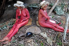 Zo'é (guiraud_serge) Tags: brazil portrait brasil amazon indian tribe ethnic indien matogrosso indio labret brésil tribu amazonie amazone forêttropicale ethnie kayapo kuikuro metuktire plateaulabial hautxingu parcduxingu sergeguiraud artducorps ornementcorporel