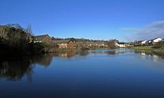 Basinger (Bricheno) Tags: paisley canal basin ferguslie mill fergusliemill swans cygnets reflections suburbia bricheno scotland escocia schottland écosse scozia escòcia szkocja scoția 蘇格蘭 स्कॉटलैंड σκωτία