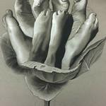 """Baer, Brenna-Anatomical_Blossom <a style=""""margin-left:10px; font-size:0.8em;"""" href=""""http://www.flickr.com/photos/11233681@N00/16573105291/"""" target=""""_blank"""">@flickr</a>"""