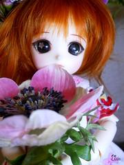 Framboise (Ushi de Bray) Tags: anime doll manga honey bjd luts delf abjd framboise