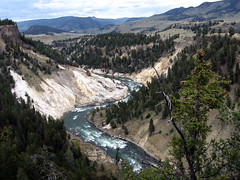 Canyon (DiSorDerINaMirrOR) Tags: wild usa mountains nature river canyon yellowstone